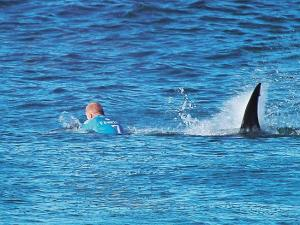 Mick Fanning - Fear